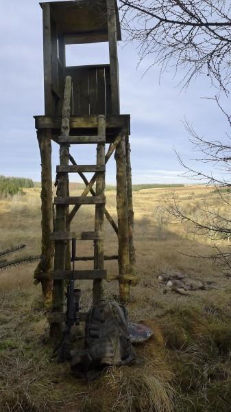 Tårnet på Timberroad med god utsikt