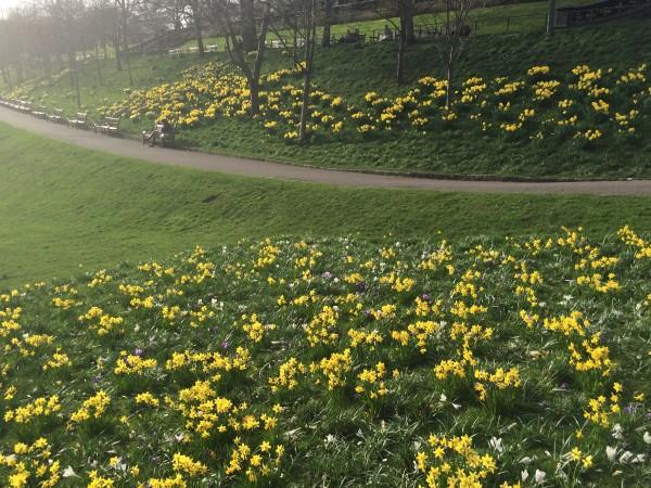 Våren er her