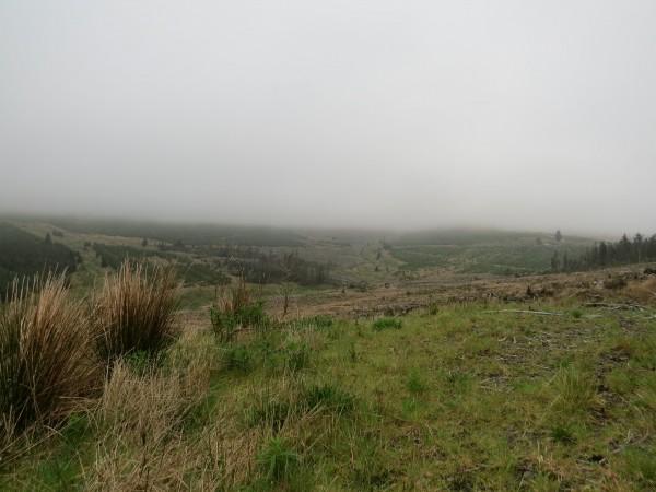 Greensykes, andre veien