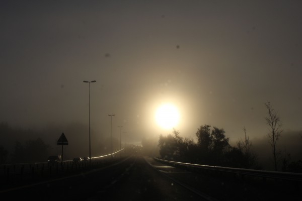 Tidlig morgen med tåke og lav sol. På vei til Roy Arne