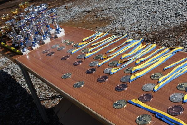 Medaljer til de Svenske Mesterne