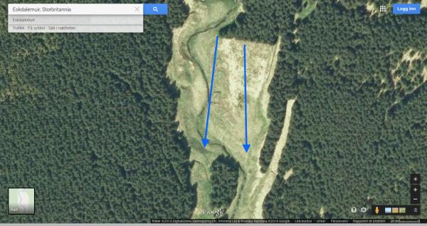 Snek meg hjørnet på skogen: spotting... Nei. Et skritt spotting... Nei. Et skritt til osv... Nei Da hadde jeg spottet begge sider nedover. Ingen dyr å se. Skulle jeg velge høyre eller venstre side side nedover? Jeg valgte høyre av gml vane